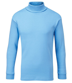 BLUEMAX DERWENT POLO NECK PULLOVER